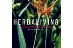 Teletrabalho -Projeto Herbalife
