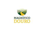 Procuramos Mestre, Marinheiro ou Patrão Local para o Douro.