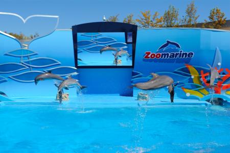 Zoomarine 2