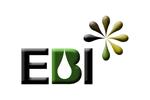 Ebi - Investigação E Desenvolvimento, Unipessoal Lda
